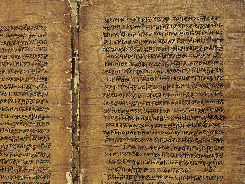 Manuskript auf Birkenrinde: das Rupavatra, ein Grammatik-Buch auf Basis der Sanskrit-Grammatik